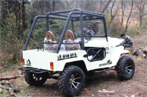 Ce 250cc ATV Electric ATV for Farm pictures & photos