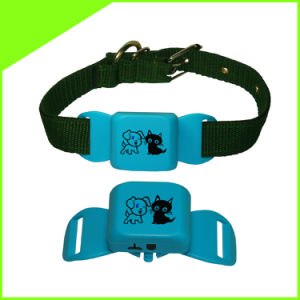 Cctr623 Real Time Waterproof Cats Pet Dog Collar GPS Tracker Lifetime Free Platform Service Charge pictures & photos