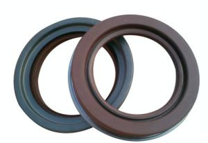 High Pressure TC4 Oil Seal/High Quality Oil Seal Supplier pictures & photos