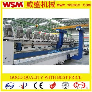 Automatic Stone Line Shaping Polishing Machine with 16 Heads pictures & photos