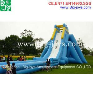 Promotion Giant Inflatable Hippo Slide for Sale (BJ-S03) pictures & photos