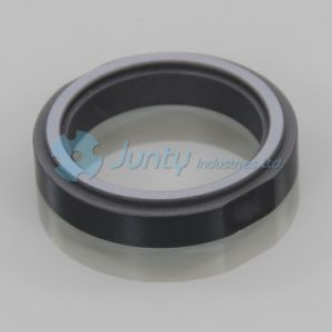 Sic Seal Faces for Machinery with ISO 9001 pictures & photos