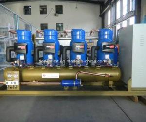 Parallel Medium Temperature Compressor Unit pictures & photos