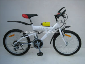 "20"" Steel Frame Moutain Bike (2004) pictures & photos"