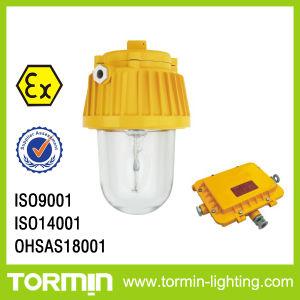 Explosion Proof Lamp for Hazardous Area