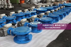Three Eccentric Butterfly Valves pictures & photos