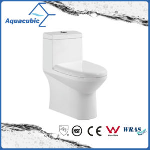 One Piece Dual Flush Ceramic Toilet in White (ACT7004) pictures & photos
