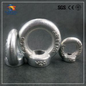 Hot Selling Forged Zinc Plated DIN 582 Eye Nut pictures & photos