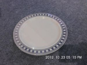 "9"" Plastic Plates with Hot Stamp"