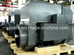 Electric Power Generator with Basler AVR Double Bearing pictures & photos