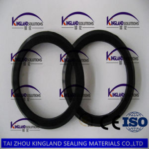 (KLG483) Cr Neoprene Rubber Seal Gasket pictures & photos