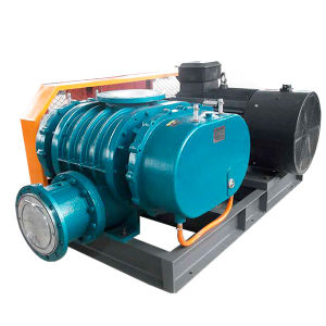 Competitive Price Oxidation Roots Air Blower pictures & photos
