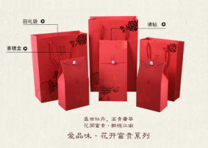 Paper Eco-Friendly Carrier Bags With Ribbon Handle (GB-16) pictures & photos