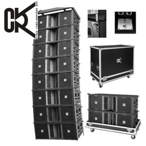 Cvr PRO Audio Line Array Speaker (W-8) pictures & photos