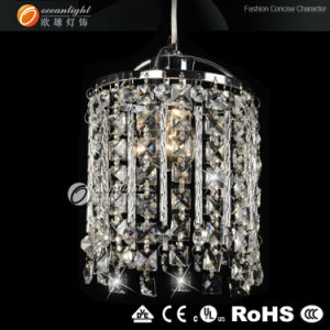 Beauty Pendant Light Fixtures, Modern Pendant Lamp (OMG88139) pictures & photos