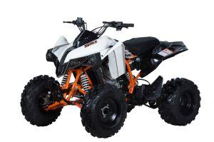 Racing Quad Smax250