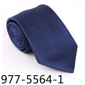 New Design Men′s Fashionable DOT Necktie (5664-1) pictures & photos