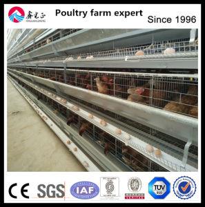 Chicken Farm Equipment Chicken Cage pictures & photos