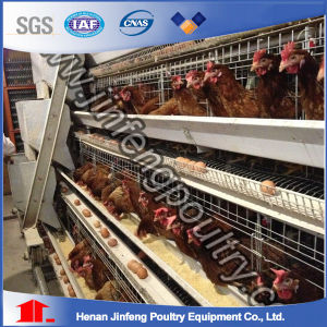 Jinfeng Best Design Durable Automatic a Type Battery Layer Chicken Cage pictures & photos