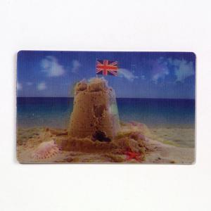 Eco-Friendly Advertising 3D Fridge Magnet pictures & photos