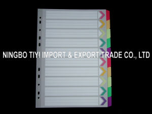 Paper Dividers /Colors Tab Divider