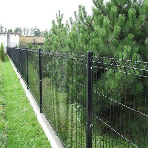 PVC Coated Welded Wire Mesh Fence pictures & photos