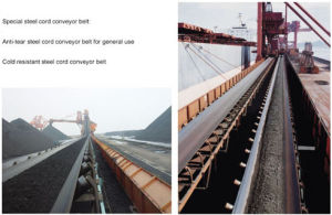 Steel Cord Conveyor Belt pictures & photos