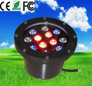 12V DMX 512 Control RGB LED Lamp Lights for Park