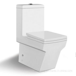 St-1031 Economic Twyford Water Closet Washdown Close Couple Ceramic Toilet