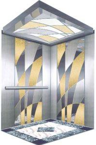 Professional Home Hydraulic Villa Elevator (RLS-108) pictures & photos