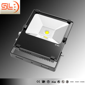 Driverless LED Floodlight COB Chips with CE pictures & photos