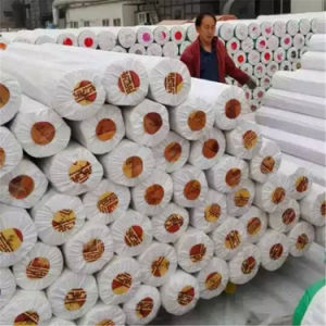70g 130g 150g Material Back Plastic Roll Flooring Carpet pictures & photos