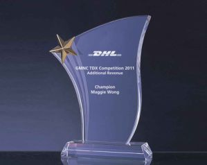 Nice Crystal Award Trophy (WHTC-C0134)