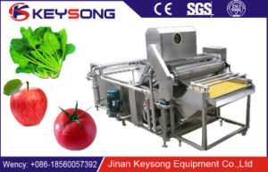 Fruit and Vegetable Air Bubble Surfing Washing Machine pictures & photos