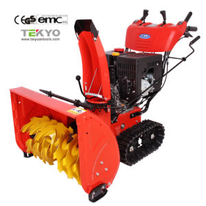 30 Inch Two Stage Track Snow Blower (TY30DG130T)