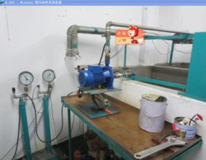 Iran Voc Product Inspection Service pictures & photos