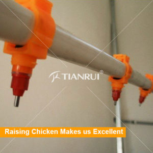 Cheaper Price Chicken Farm Automatic Poultry Nipple Drinker System pictures & photos