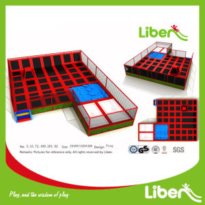 Professional Manufacturer Large Trampoline with Factory Price pictures & photos