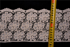 Fashion Chemical Lace for Dress pictures & photos