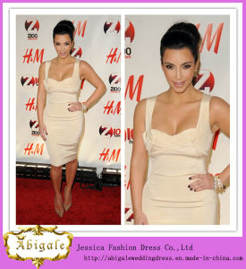 2013 Sexy Slim Sheath Knee Length Spaghetti Straps Custom Made Celebrity Dress (SR72)