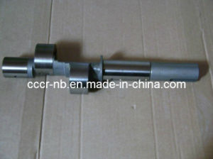 Crankshaft in Bitzer Refrigeration Compressor pictures & photos