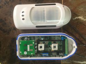 Anti-Mask Alarm PIR & MW Detector Ta-89 pictures & photos
