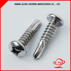 Pan Head / Flat Head / Hex Washer Head Self Drilling Screw Self Drilling Tapping Screw/Machine/Drywall Chipboard Screw/ Hexagon Socket Screw pictures & photos