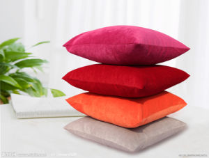 Various Colour Velvet Cushion pictures & photos