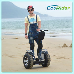 High Power Electric Motorcycle, Self Balancing Scooter, Electric Chariot Balance Scooter pictures & photos