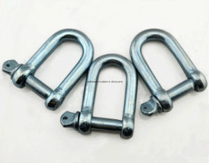 EU Type High Tensile Steel Large D Shackle pictures & photos