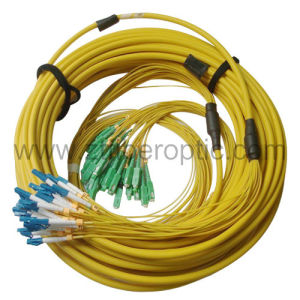 Singlemode 24 Fibers Sc-LC Fiber Optic Patch Cord