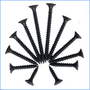 Black Bugle Head Wall Board Screw pictures & photos