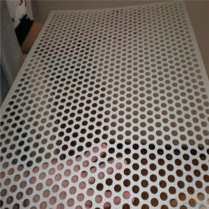 Q195, Q235 Perforated Metal Mesh pictures & photos