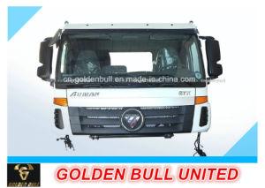 Auman Truck Parts Cab Assembly 1 pictures & photos